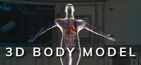 3D Body Model